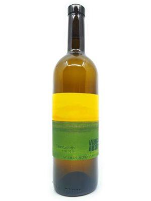 Muster Sauvignon Blanc Opok